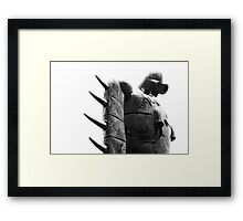 The Black and White Album - #8 Framed Print