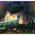 Sleepy Rail House by Catherine C.  Turner