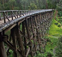 Noojee Trestle Bridge by Lois Romer