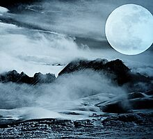 Moonlight by MEV Photographs