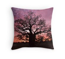 Boab Tree at sunset with a mackerel sky, Derby, Western Australia. Throw Pillow