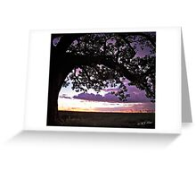 Wet Season Sunset, Derby Marsh. Greeting Card