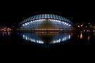 Science Park, Valencia by Paul Tait