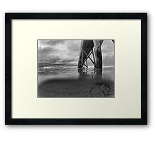 Under the sea. B & W Framed Print