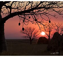Merry Christmas from Derby, West Kimberley Region of Western Australia. Photographic Print