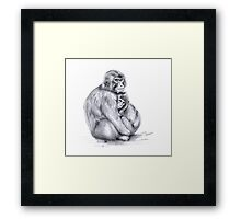 Snow monkey and baby g2009-026 by schukina Framed Print