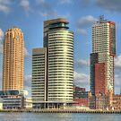 Rotterdam sight  by Peter Wiggerman