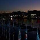 Dusk over Darling Harbour by Chris Hood