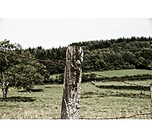 Rural Barbed Wire Photographic Print