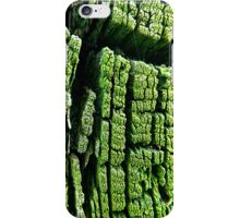 green trunk  iPhone Case/Skin