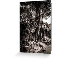 Tree grows out of the ruin of Ta Som, Angkor Greeting Card
