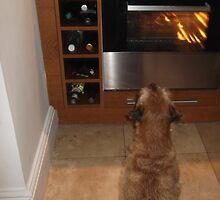 Is Dinner Ready? by John Honeyman