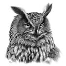 Eurasian Eagle Owl  g2012-045 by schukina by schukinart