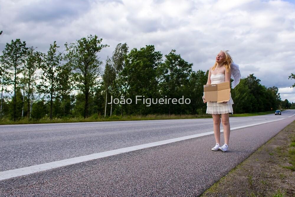 Choose a destination by João Figueiredo