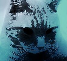 Feeling Blue by Jessica Britton