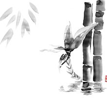 floating bamboo by pechane