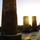 Kom Ombo Columns in the sun by Siegeworks .