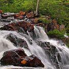 mink river falls by Dawne Olson
