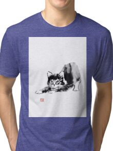 stretching cat Tri-blend T-Shirt