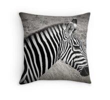 Zebra in BW Throw Pillow