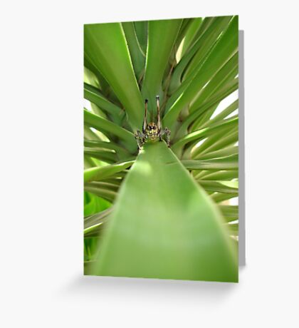 Katydid and The Green Mile Greeting Card