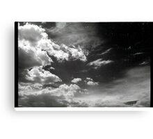 00299 Canvas Print
