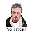 Yo Bitch by Tom Roderick