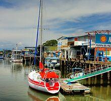 Little Red Yacht by Michael Damanski