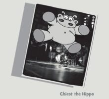 Chicot the Hippo Live On Stage by Chicot