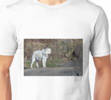 A lone Arctic Wolf Unisex T-Shirt