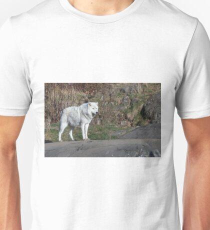 A lone Arctic Wolf Unisex T-Shirt