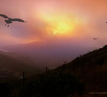 Marin Headlands Sunset by David Denny