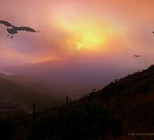 Marin Headlands Sunset by David Denny