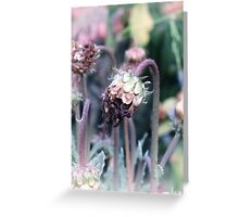 fairy couture Greeting Card