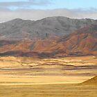 Bolivian Altiplano by stevefinn77