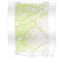 USGS Topo Map Washington State WA Pine Mtn 243134 1971 24000 Poster