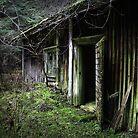 18.11.2015: Old Sauna by Petri Volanen
