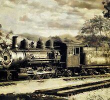 Virginia City Iron Horse by pat gamwell