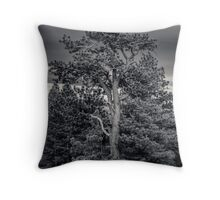 Ponderosa Pine In B&W - Ahtanum State Forest, WA - U.S.A. Throw Pillow