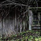 18.11.2015: Old Sauna III by Petri Volanen