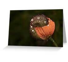 """Protected by my Rain Hat..."" Greeting Card"
