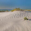North Stradbroke Island Qld Australia by Beth  Wode
