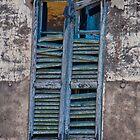 Old decaying window by Michael Brewer