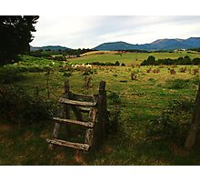 Countryside Fence Photographic Print
