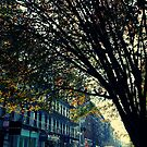 Fall in Soho by Amped