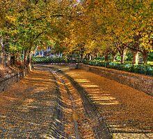 Bendigo Creek HDR by Joel Bramley