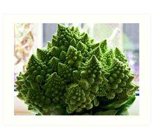 Romanesco vegetable vision Art Print