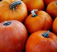 Pumpkins! by Debra Fedchin