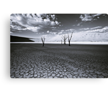 The Barren Land of Dead Vlei Canvas Print