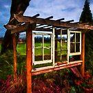Framed Pergola by Steve Walser